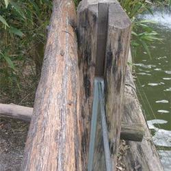 Die Kanten sind in den Naturholzstamm eingelassen. (Sicht von oben)